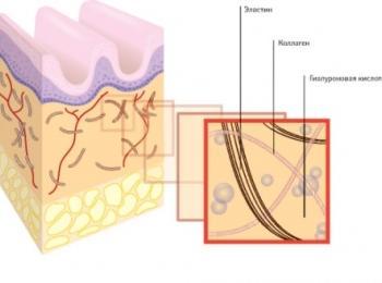 До 60% всей гиалуроновой кислоты в организме находится в кожных покровах
